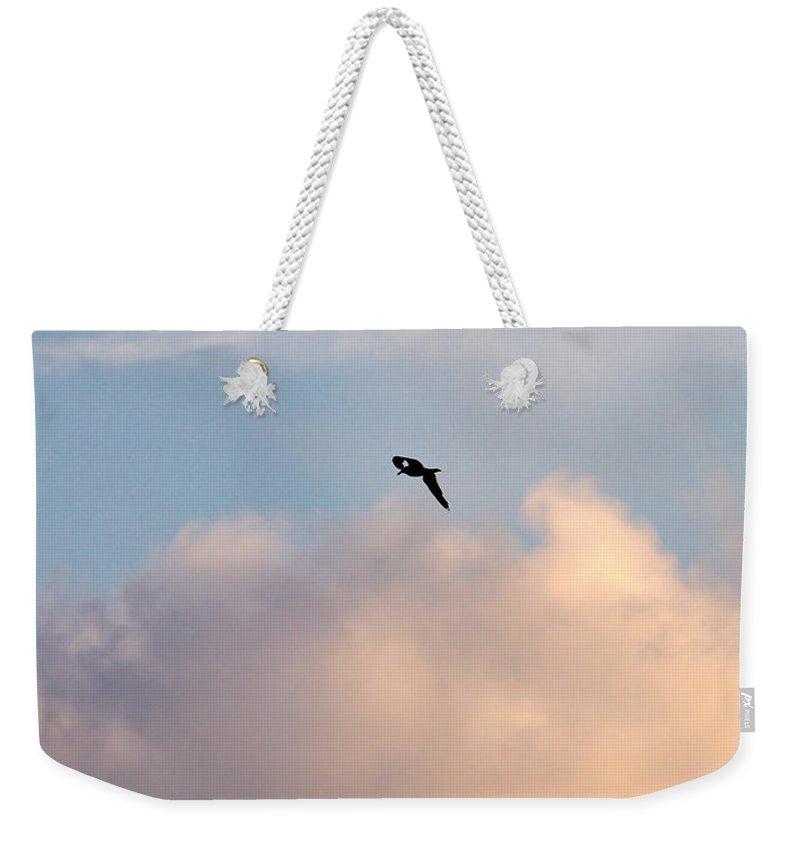 Lehtokukka Weekender Tote Bag featuring the photograph Seagull's Sky 3 by Jouko Lehto