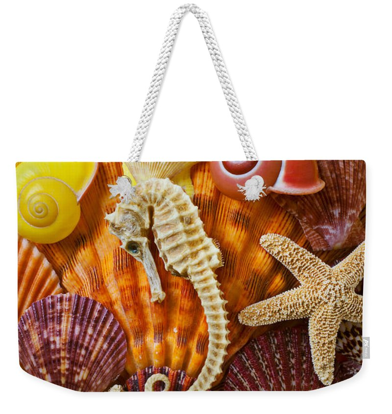Seahorses Weekender Tote Bag featuring the photograph Seahorse And Assorted Sea Shells by Garry Gay
