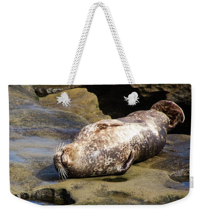 Seal Weekender Tote Bag featuring the photograph Sealed With A Smile by Amy Sorvillo