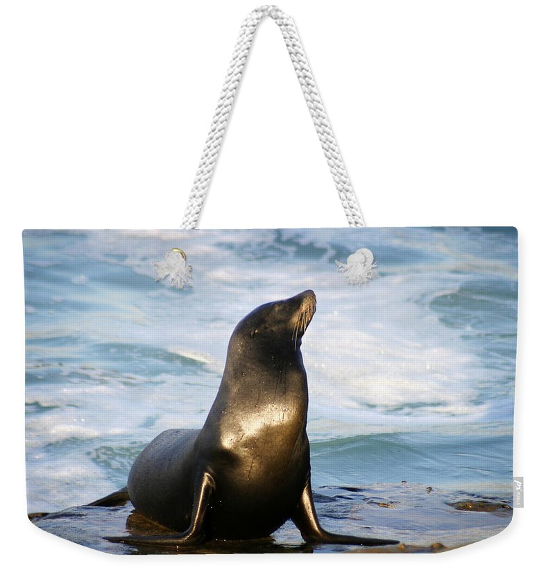 Sealion Weekender Tote Bag featuring the photograph Sealion by Anthony Jones