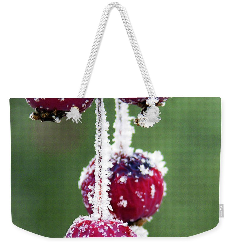 Berries Weekender Tote Bag featuring the photograph Seasonal colors by Marilyn Hunt