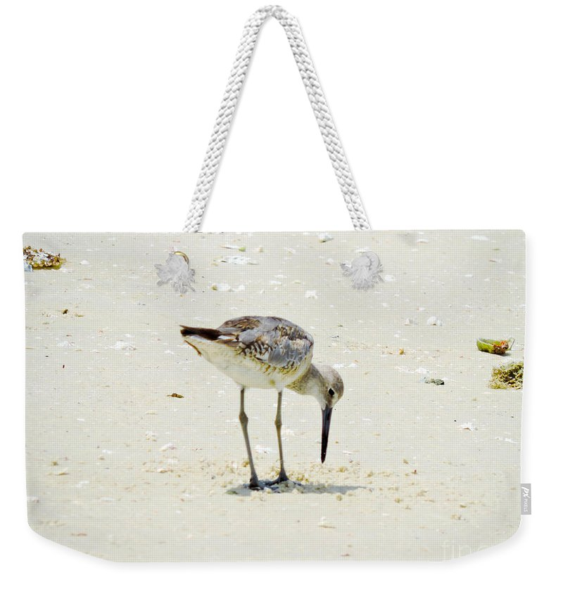 Plover Weekender Tote Bag featuring the photograph Searching Plover by Marilee Noland