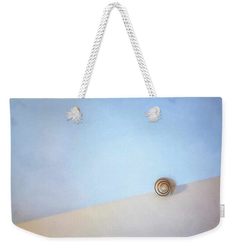Seashell Weekender Tote Bag featuring the photograph Seashell by the Seashore by Scott Norris