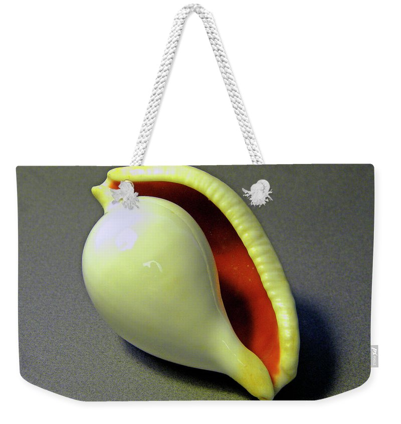 Frank Wilson Weekender Tote Bag featuring the photograph Seashell Egg Cowry by Frank Wilson