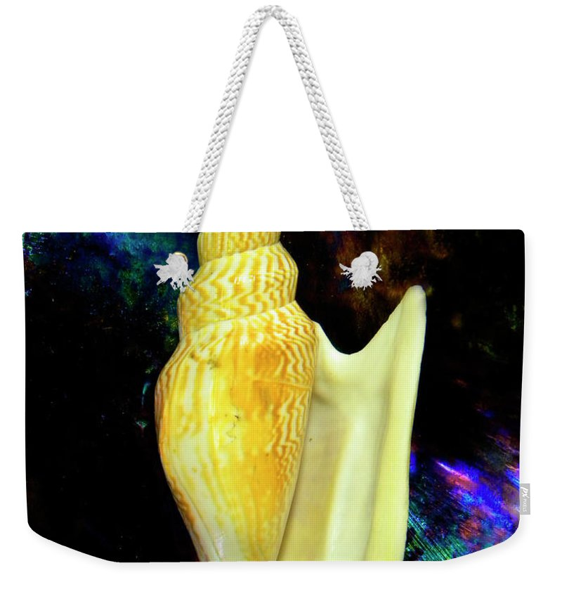 Frank Wilson Weekender Tote Bag featuring the photograph Seashell Strombus Listeri by Frank Wilson
