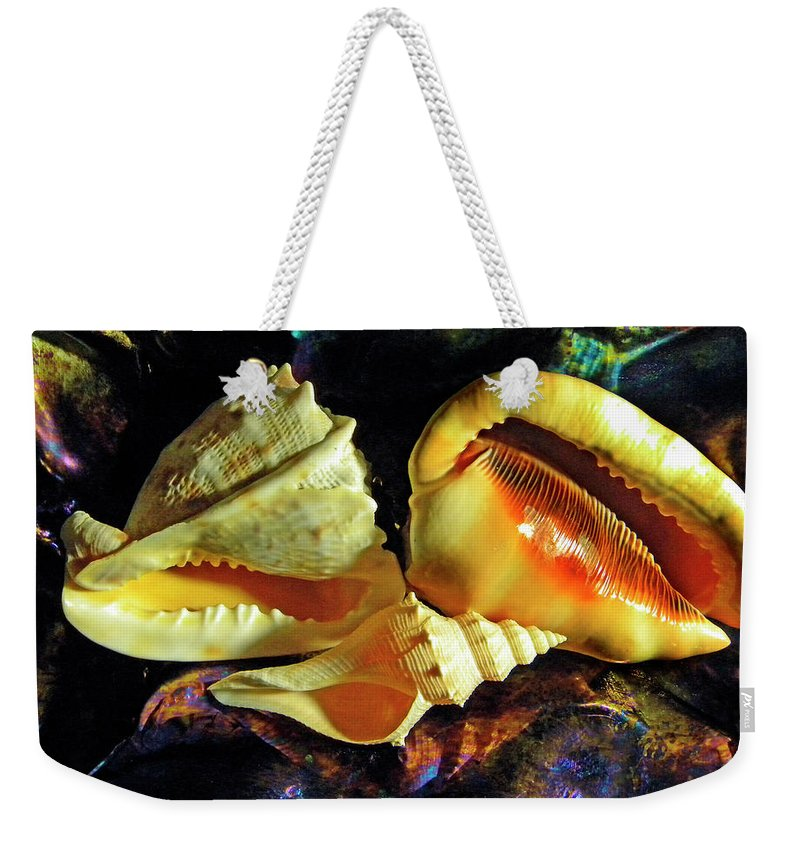 Frank Wilson Weekender Tote Bag featuring the photograph Seashells by Frank Wilson