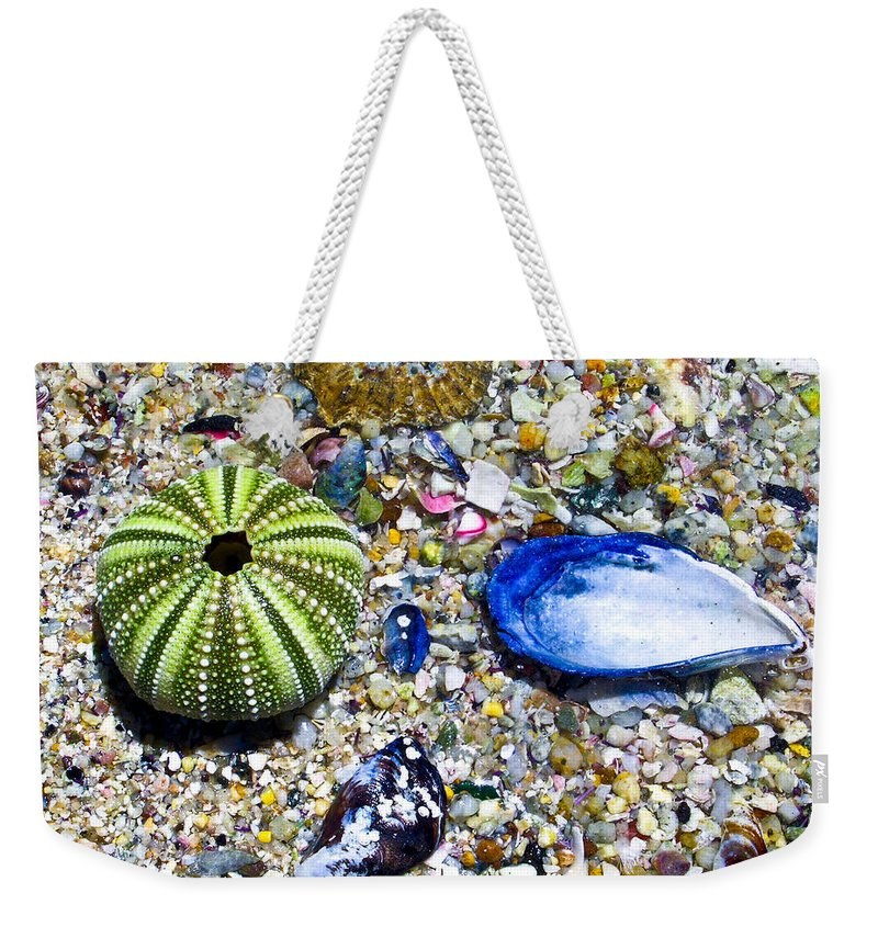 Seashore Weekender Tote Bag featuring the photograph Seashore Colors by Douglas Barnett