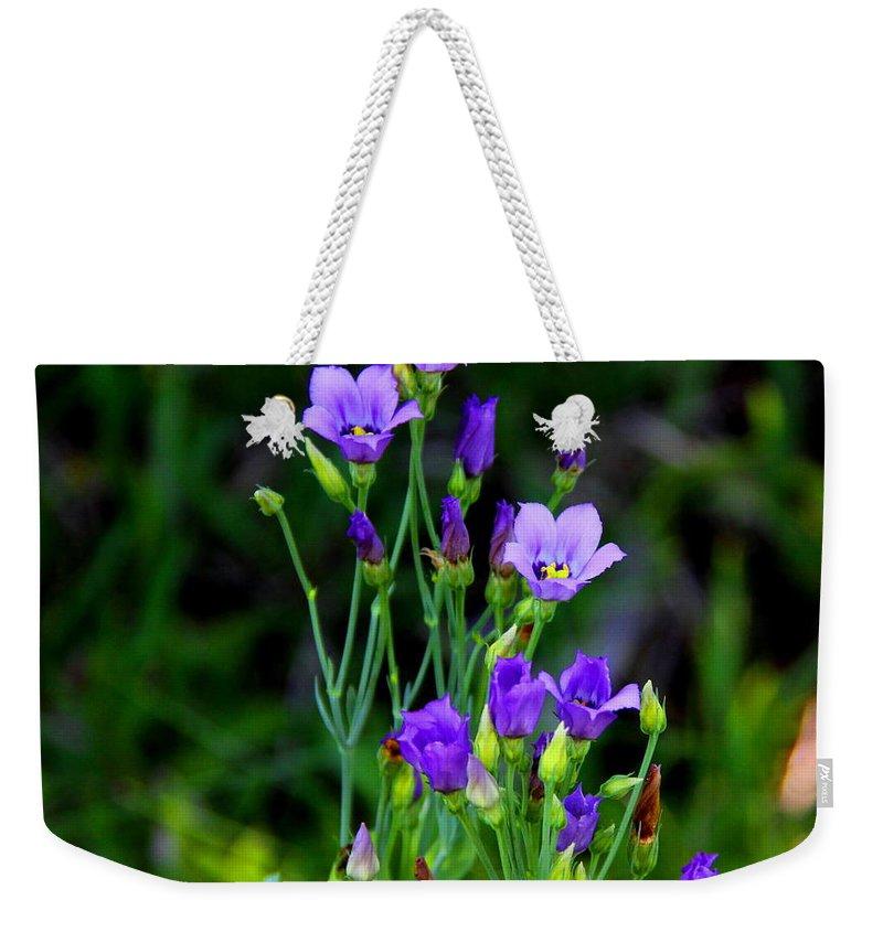 Seaside Gentian Wildflower Weekender Tote Bag featuring the photograph Seaside Gentian Wildflower by Barbara Bowen