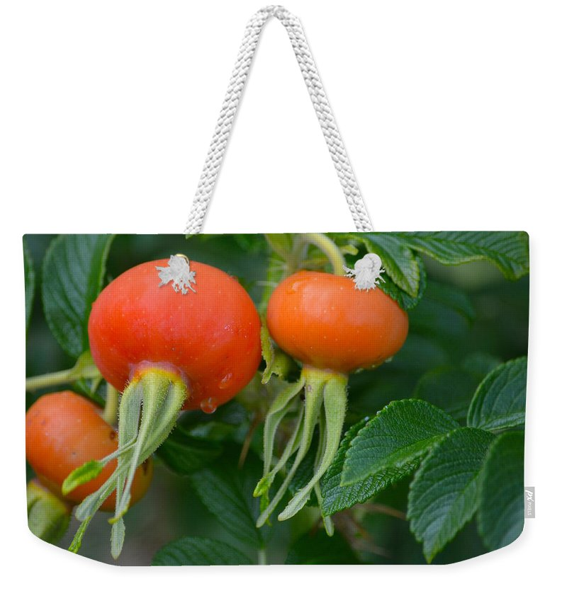 Red Weekender Tote Bag featuring the photograph Season End by Hella Buchheim