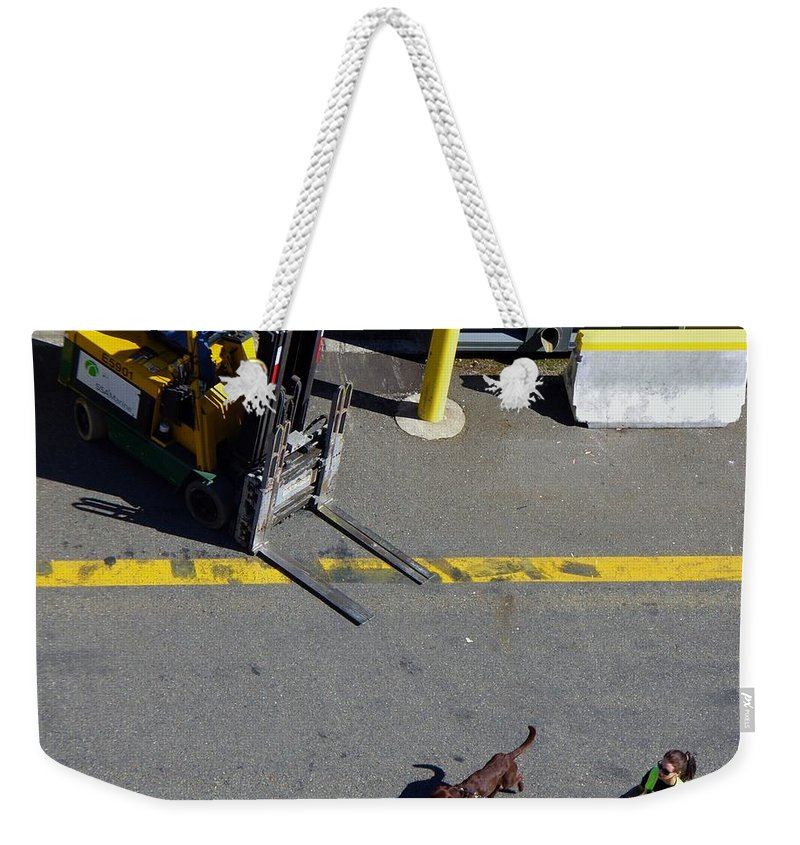 Seattle Weekender Tote Bag featuring the photograph Seattle Dog On The Pier by Phyllis Spoor