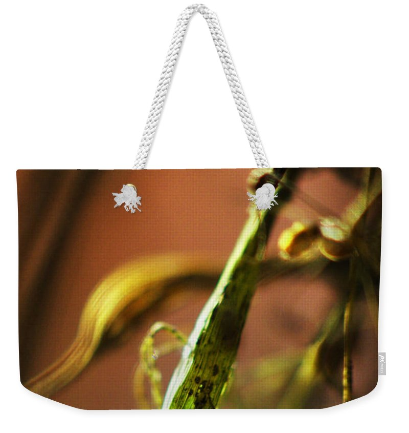 Flowers Weekender Tote Bag featuring the photograph Secret Places... by Arthur Miller