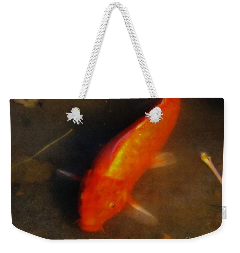Koi Weekender Tote Bag featuring the photograph Secrets Of The Wild Koi 5 by September Stone