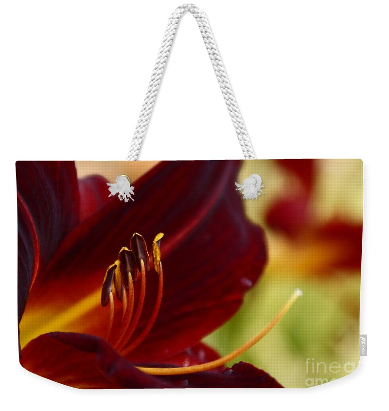 Seductive Lily Weekender Tote Bag featuring the photograph Seduction After The Rain by Joanne Smoley