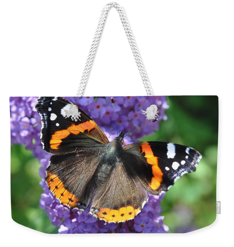 Butterfly Weekender Tote Bag featuring the photograph See Me by Eduard Meinema