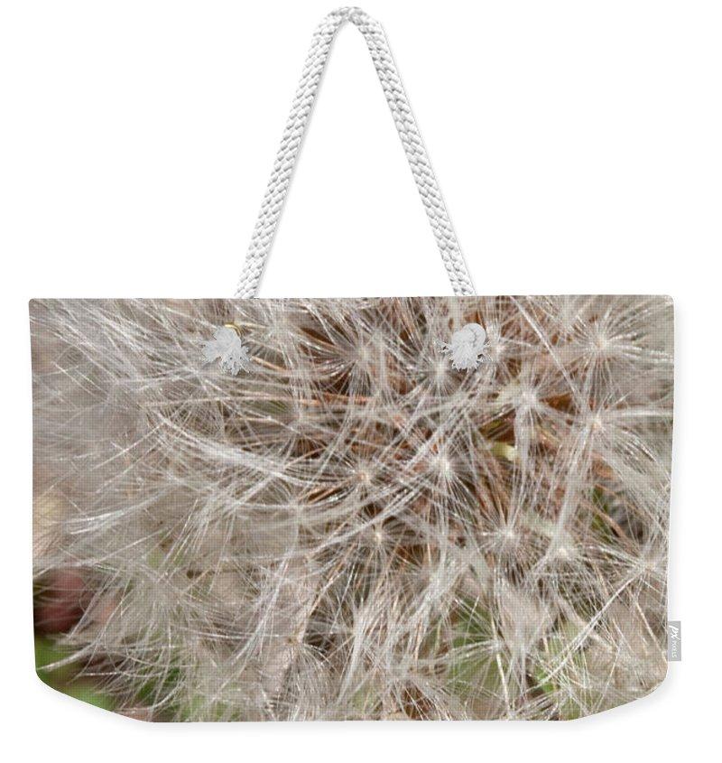Flower Weekender Tote Bag featuring the photograph Seedlings by Hannah Breidenbach
