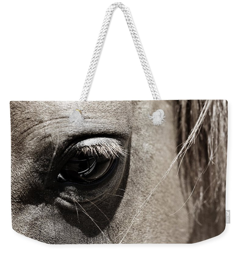 Americana Weekender Tote Bag featuring the photograph Stillness In The Eye Of A Horse by Marilyn Hunt