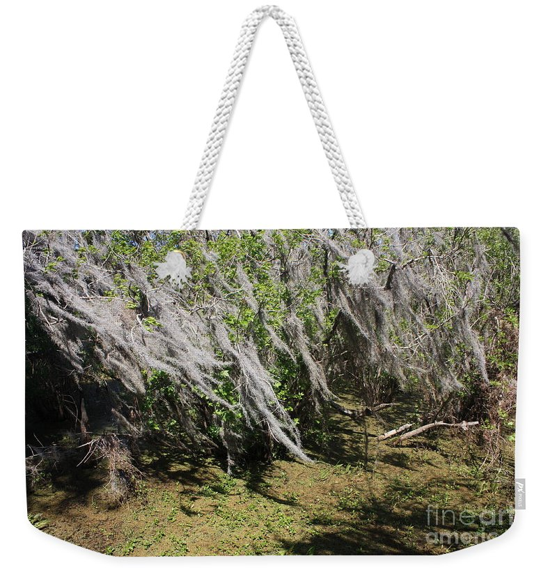 Windy Weekender Tote Bag featuring the photograph Seminole Wind by Carol Groenen