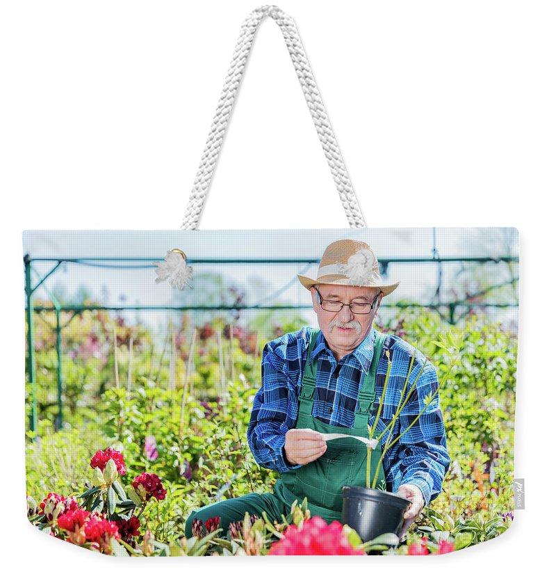 Garden Weekender Tote Bag featuring the photograph Senior Gardener Selecting A Tree. by Michal Bednarek