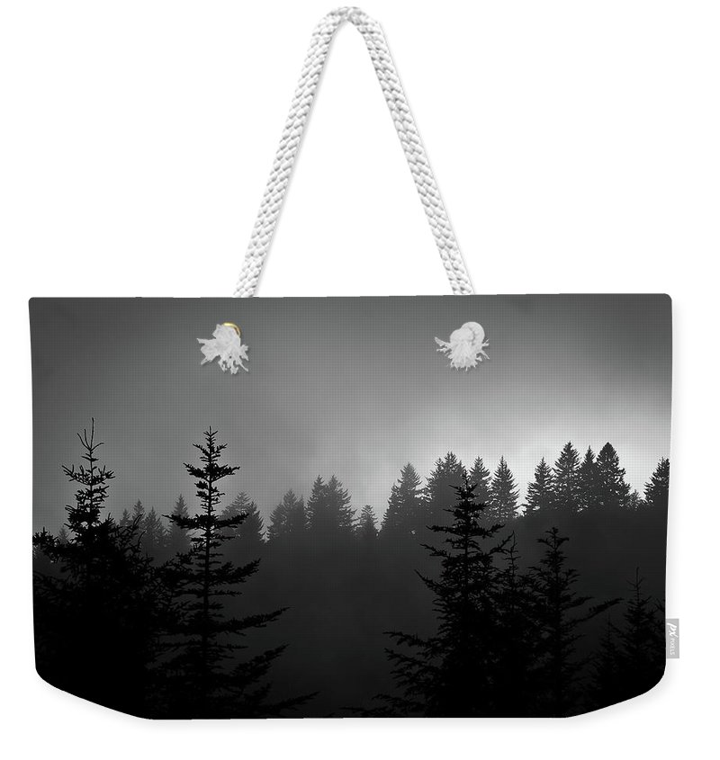Nature Weekender Tote Bag featuring the photograph Sentinels In The Mist by Steven Ford