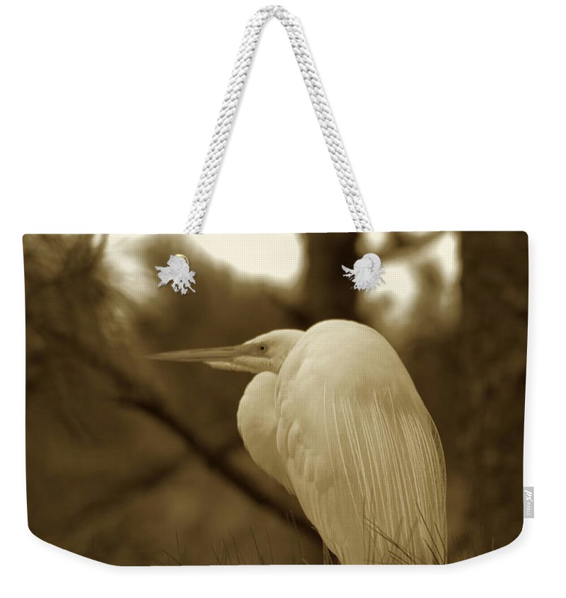 Bird Weekender Tote Bag featuring the photograph Sepia Egret by Phill Doherty