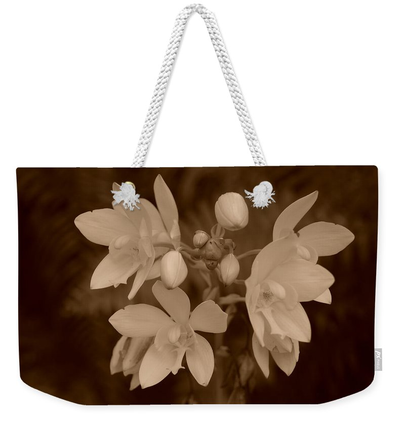 Macro Weekender Tote Bag featuring the photograph Sepia Flower by Rob Hans