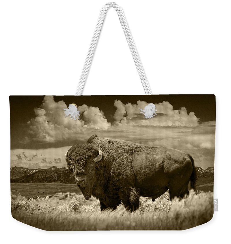 Bison Weekender Tote Bag featuring the photograph Sepia Toned Photograph Of An American Buffalo by Randall Nyhof