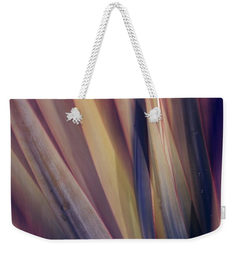 Plant Abstract Nature Blur Colors Pink Blue Yellow Geen Weekender Tote Bag featuring the photograph Shade Of Color by Linda Sannuti