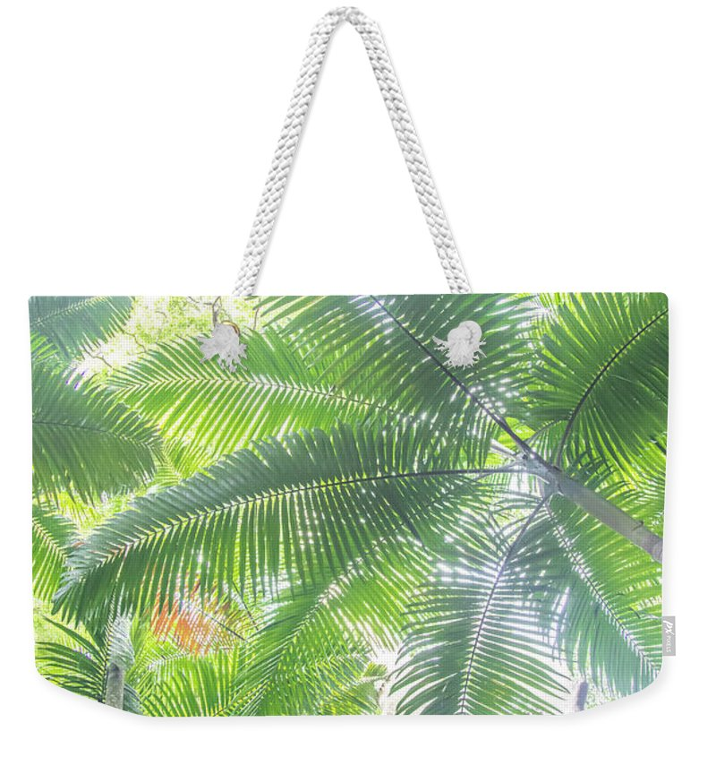Nature Weekender Tote Bag featuring the photograph Shade Of Eden by Az Jackson
