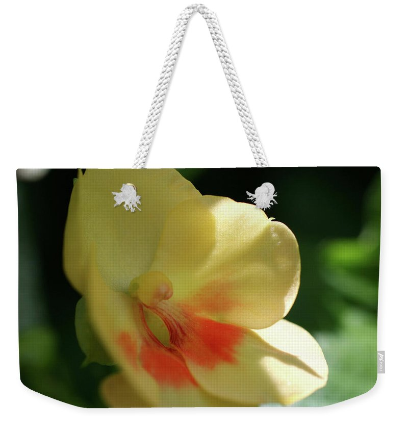 Close-up Photo Photography Flower Plant Yellow Orange Shade Orchid Weekender Tote Bag featuring the photograph Shaded Yellow Orchid by Christina Geiger