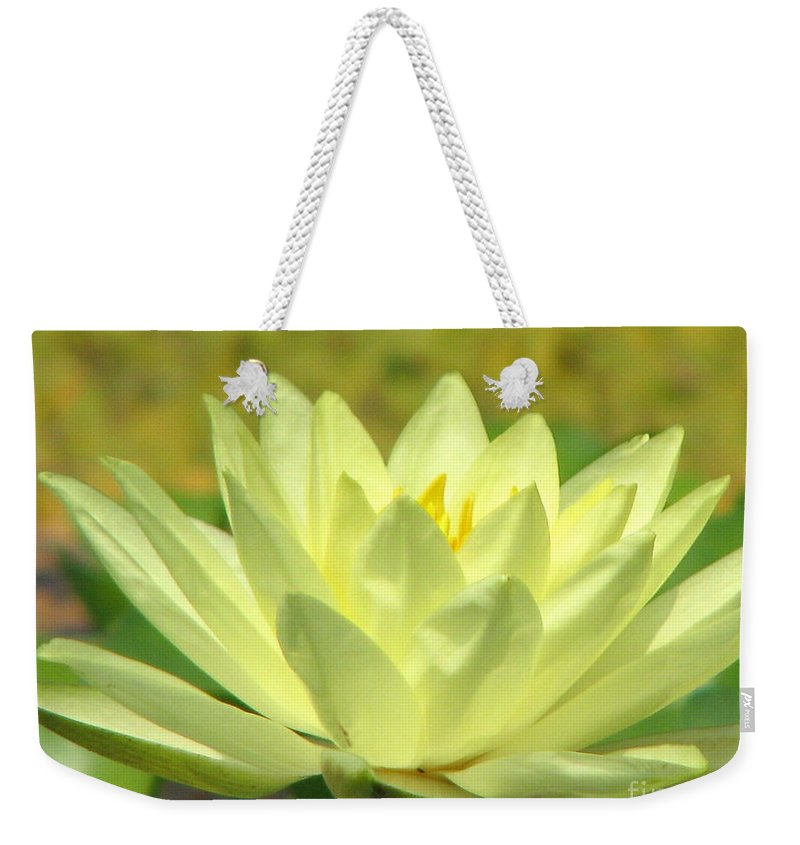 Lillypad Weekender Tote Bag featuring the photograph Shades by Amanda Barcon