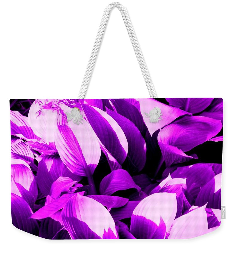 Leaves Weekender Tote Bag featuring the photograph Shades by Ian MacDonald