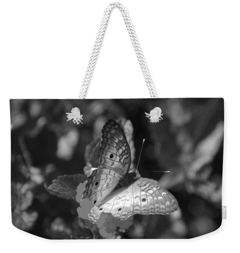 Black And White Weekender Tote Bag featuring the photograph Shades Of Flight by Rob Hans