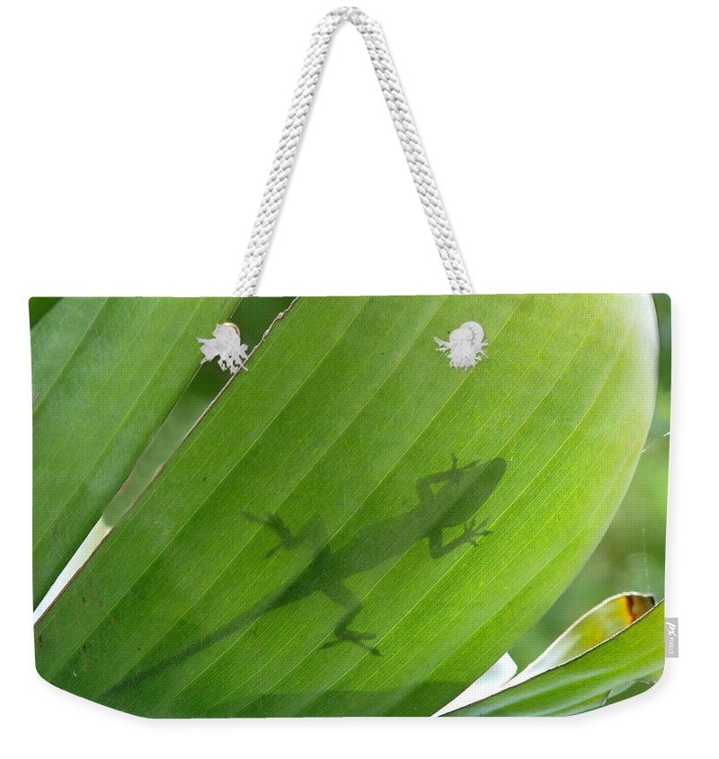 Nature Weekender Tote Bag featuring the photograph Shadow Lizard by Peg Urban