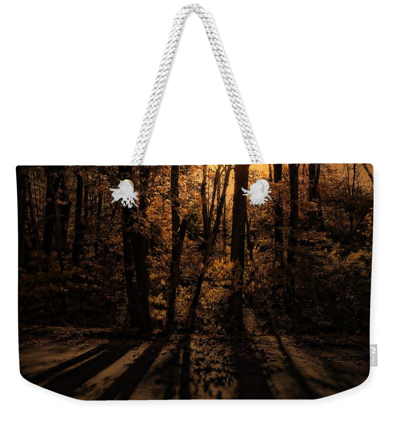Tree Weekender Tote Bag featuring the photograph Shadows by Lourry Legarde