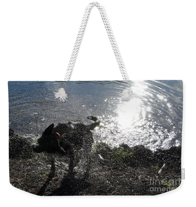 Dog Weekender Tote Bag featuring the photograph Shaking It Off by Cheryl McClure
