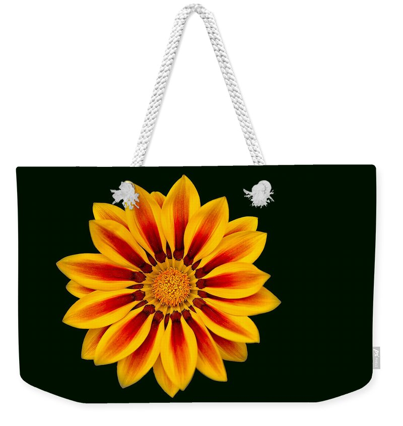 Daisy Weekender Tote Bag featuring the photograph Shasta Daisy by William Jobes
