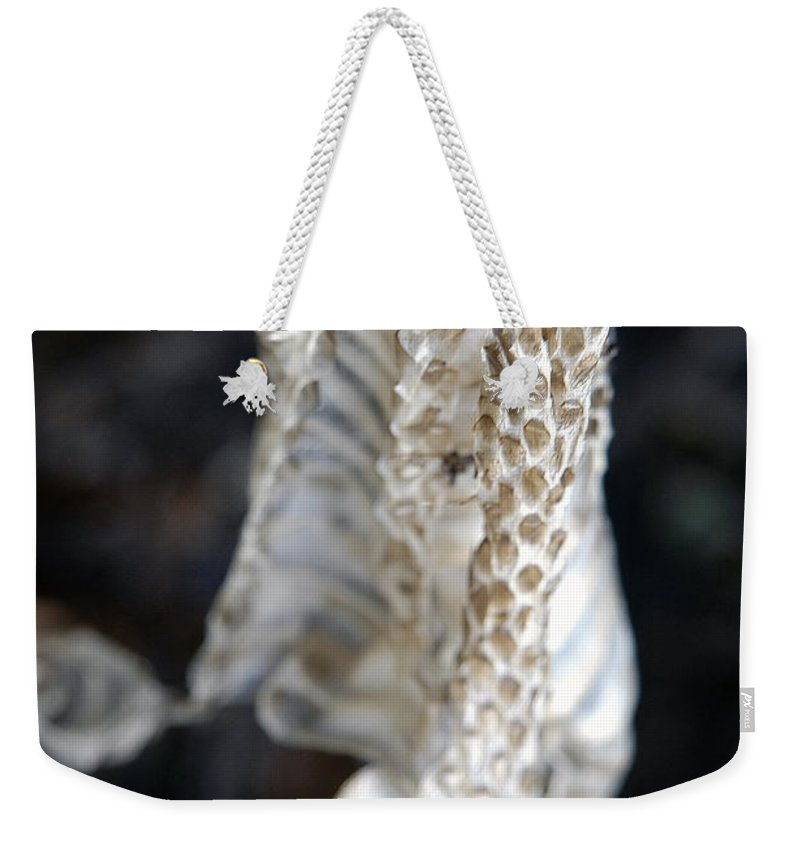 Snake Weekender Tote Bag featuring the photograph Shed - Snake Skin by D'Arcy Evans