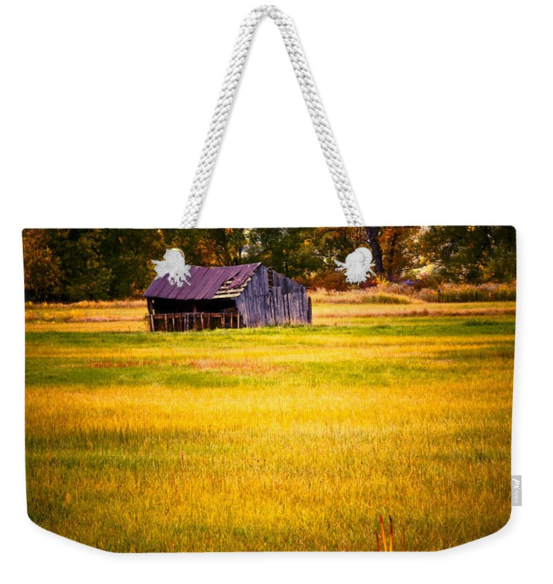 Shed Weekender Tote Bag featuring the photograph Shed In Sunlight by Marilyn Hunt