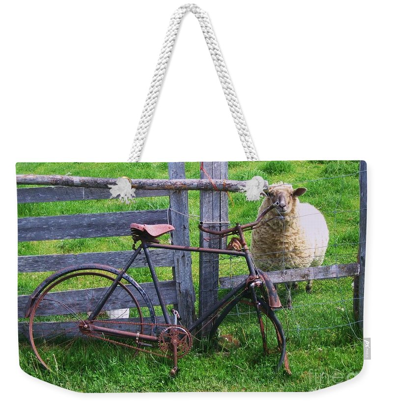 Photograph Sheep Bicycle Fence Grass Weekender Tote Bag featuring the photograph Sheep And Bicycle by Seon-Jeong Kim