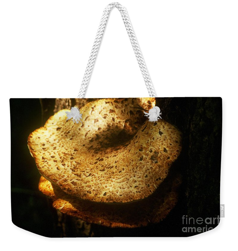 Background Weekender Tote Bag featuring the photograph Shelf Mold by Alan Look