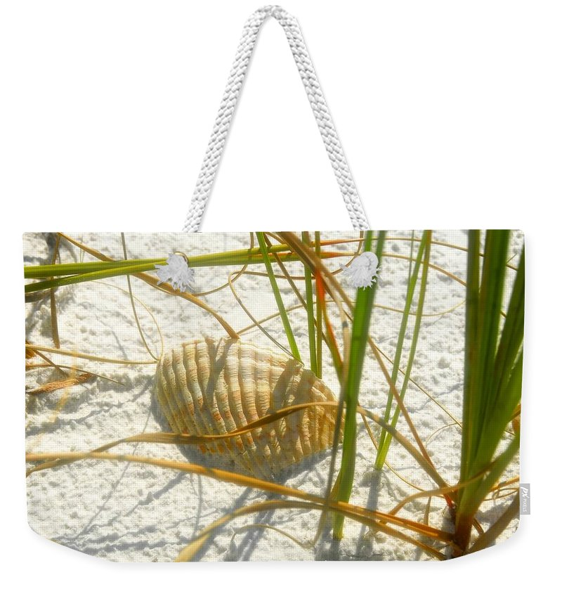 Sea Shell Weekender Tote Bag featuring the photograph Shell And Beach by David Lee Thompson