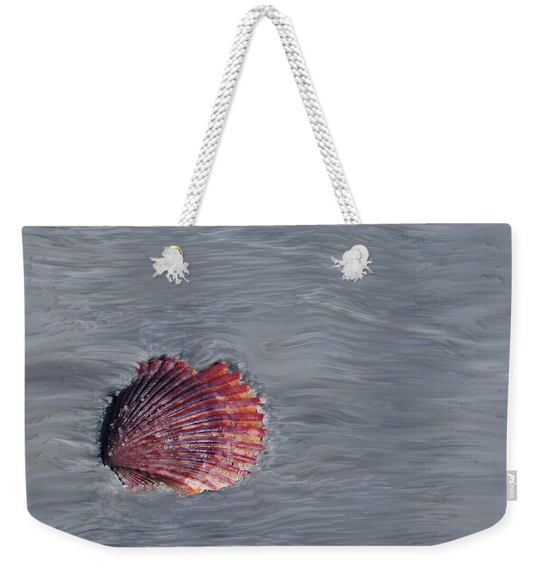 Shells Weekender Tote Bag featuring the photograph Shell Imprint by Linda Sannuti