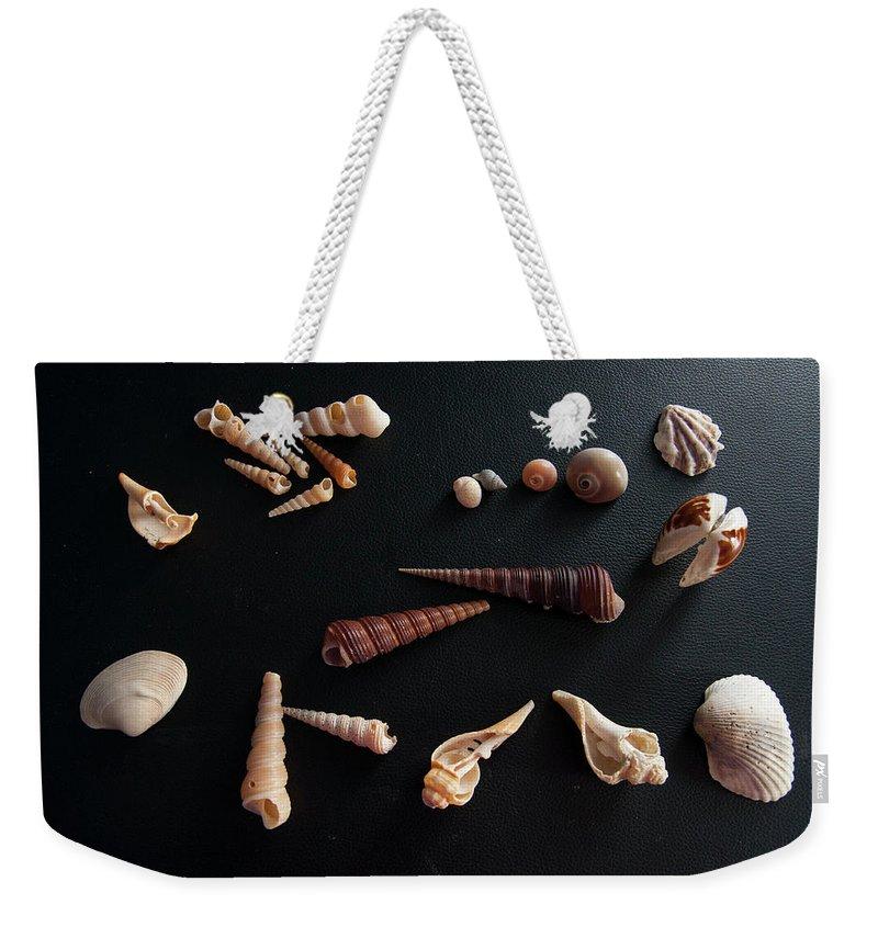 Beach Weekender Tote Bag featuring the photograph Shells by Tamara Sushko