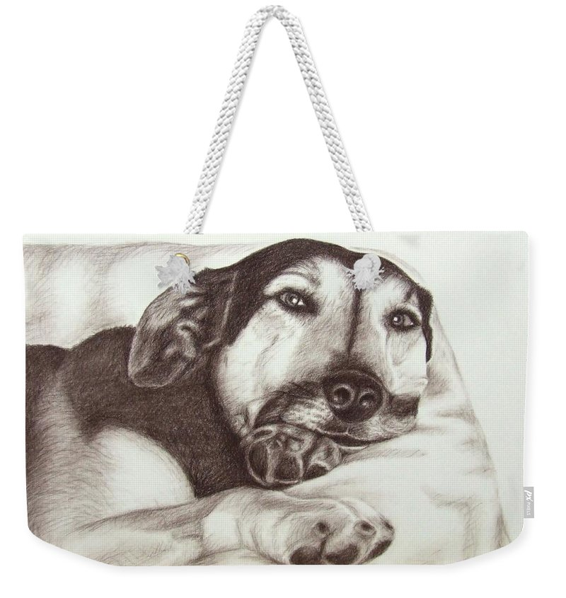 Dog Weekender Tote Bag featuring the drawing Shepherd Dog Frieda by Nicole Zeug