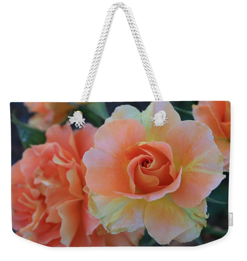 Sherbert Weekender Tote Bag featuring the photograph Sherbert Rose by Marna Edwards Flavell