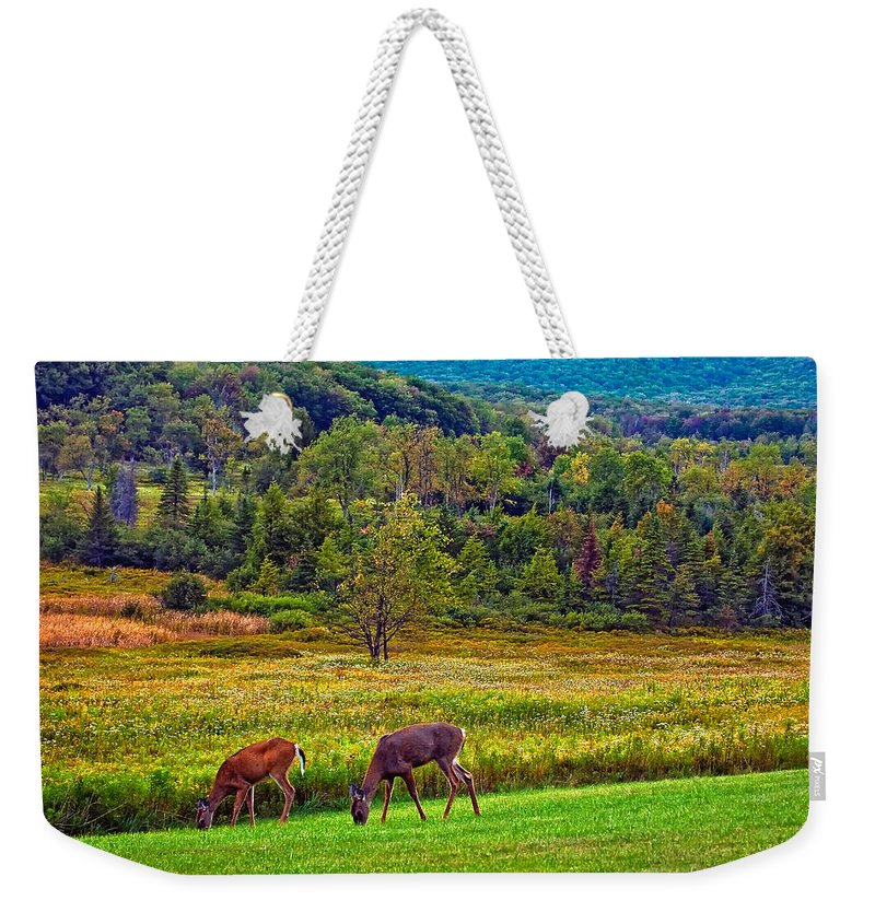 Canaan Valley Weekender Tote Bag featuring the photograph Shh... by Steve Harrington
