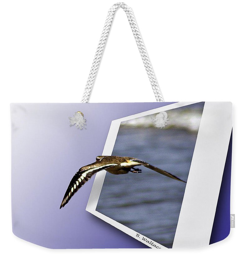 2d Weekender Tote Bag featuring the photograph Shore Bird In Flight by Brian Wallace