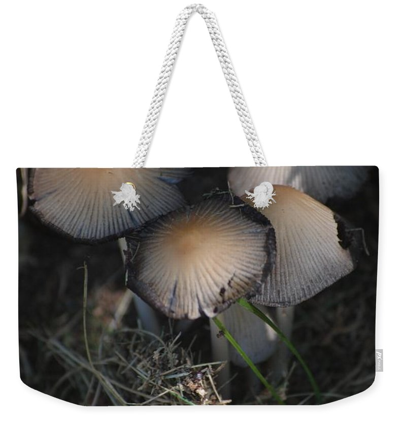Digital Photograph Weekender Tote Bag featuring the photograph Shrooms 1 by David Lane