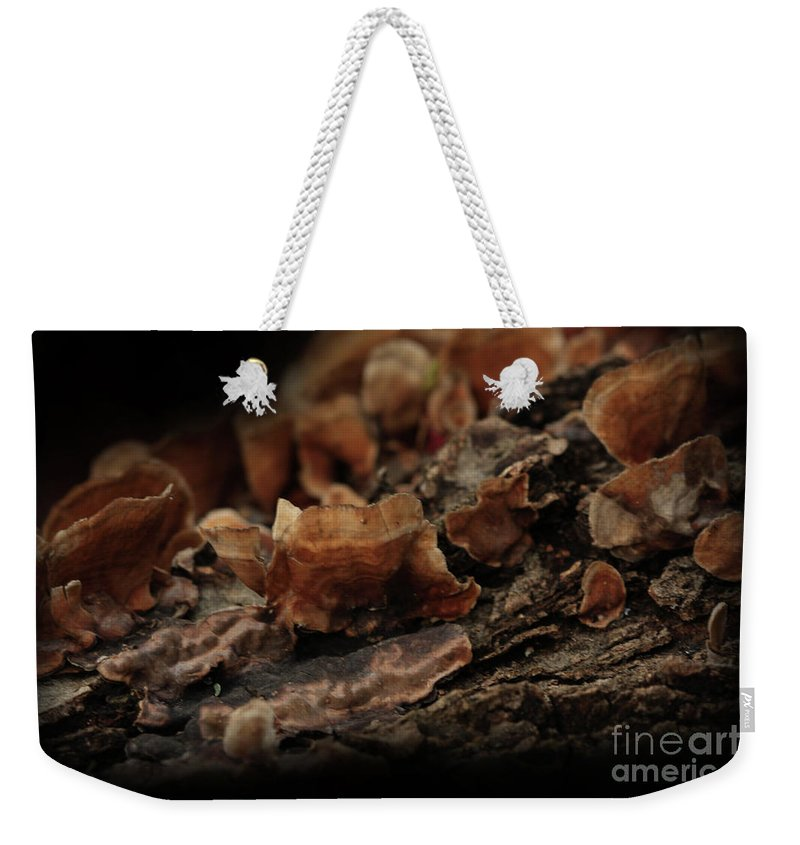 Mushroom Photography Weekender Tote Bag featuring the photograph Shrooms by Kim Henderson