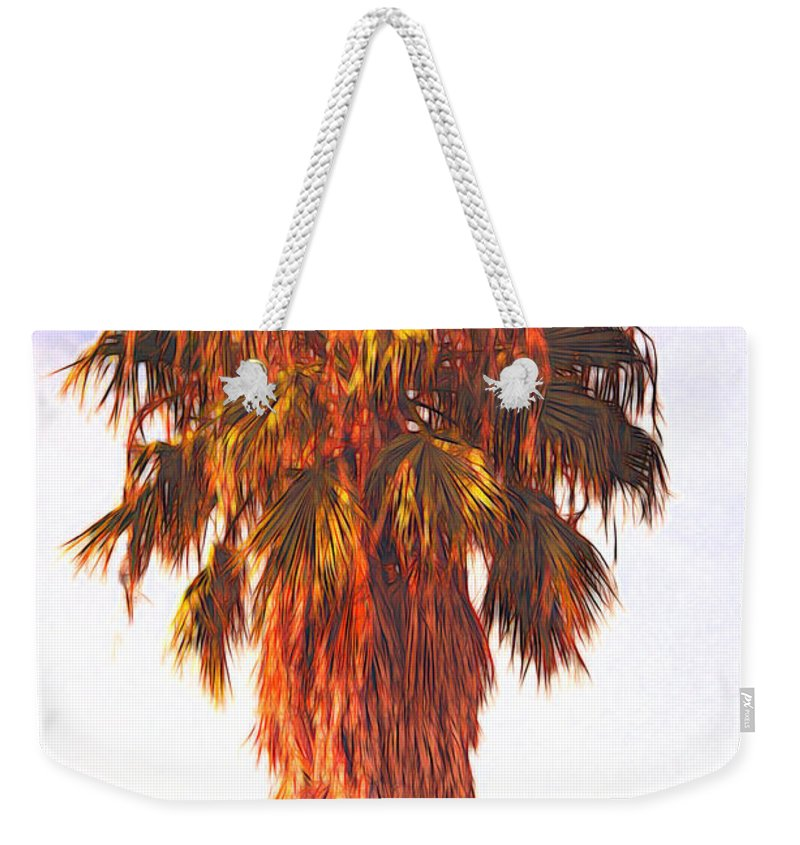 Palm Tree Weekender Tote Bag featuring the photograph Shrouded In The Past 2 by Marshall Barth